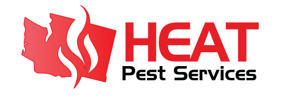 Bed Bug Treatment Seattle